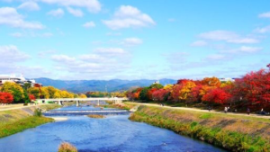 kyoto kamogawa river virtual tour